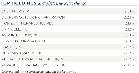 2021.05 Dana Blog 120 ESG Small Cap Top Holdings